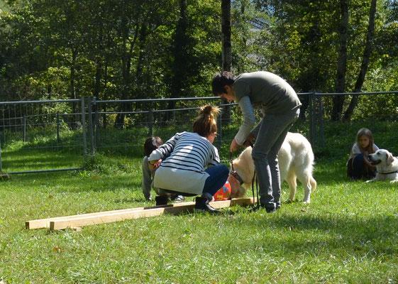 auch bei Cooper hilft die ganze Familie