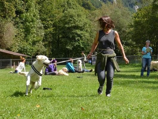 Juno springt vor Freude sogar über die Näpfe
