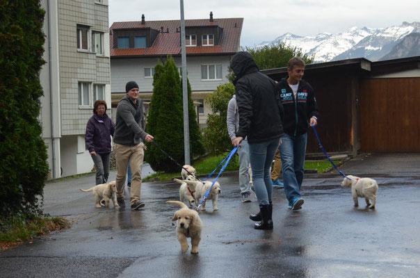 Spaziergang mit den zukünftigen Besitzern