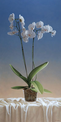 Orquídeas, 100 x 50 cm, óleo sobre tabla