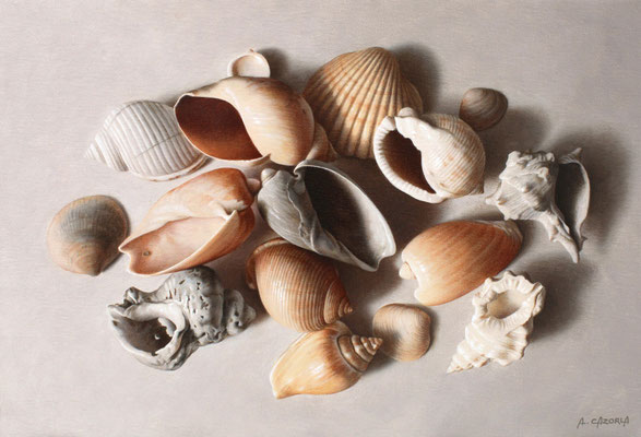 Shells on White, 24 x 35 cm, óleo sobre lienzo