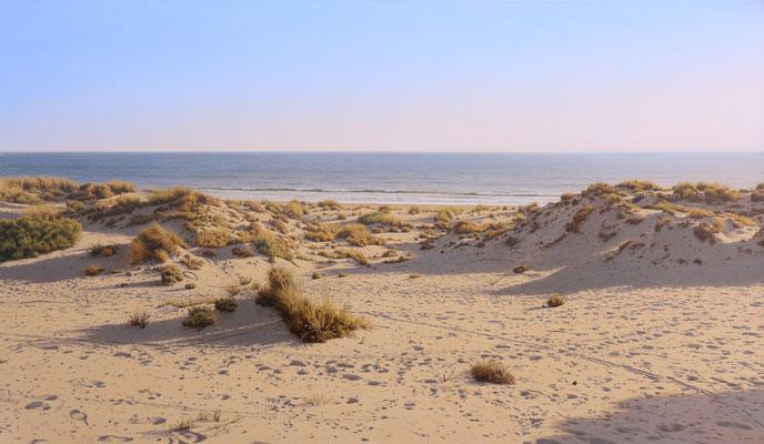 Dunes by the Sea, 114 x 195 cm, óleo sobre lienzo