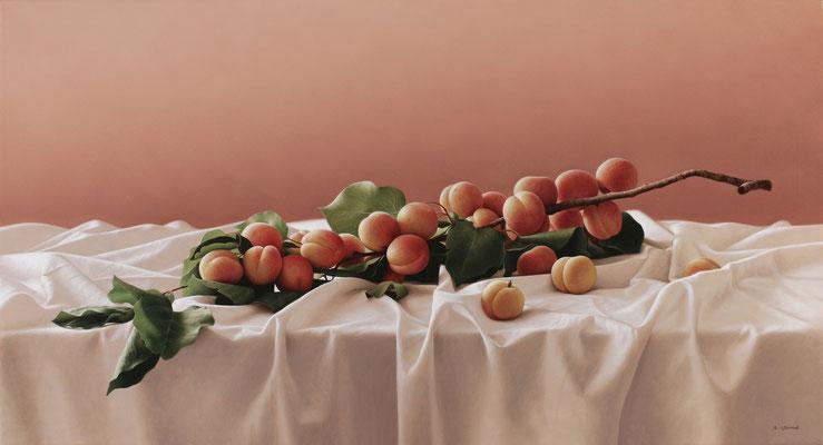 Still life, 50 x 92 cm,óleo sobre lienzo