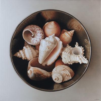 Shells on White, 73 x 73 cm, óleo sobre lienzo
