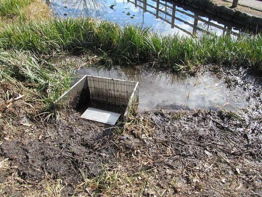 排水口周辺整備