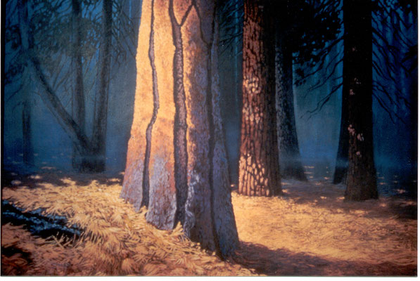 The Redwood Tree/ sold