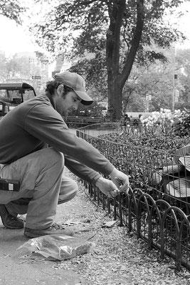Chris | Gardener | Central Park