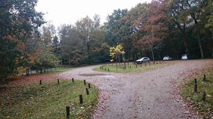Bergweg Maarn