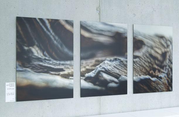 Fotodruck auf gebürstetem Alu, Triptichon