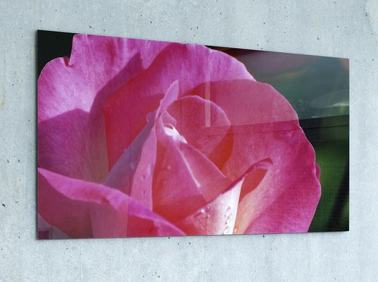Fotodruck hinter 2 mm Acrylglas