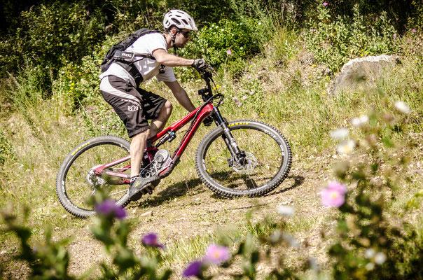 bosch bike motor