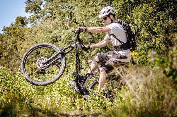 bosch motor for bike