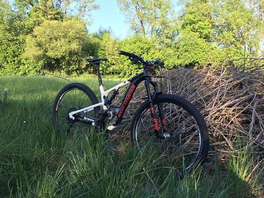 bike convertion kit