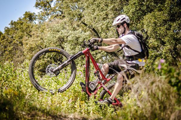 bosch bike motor only