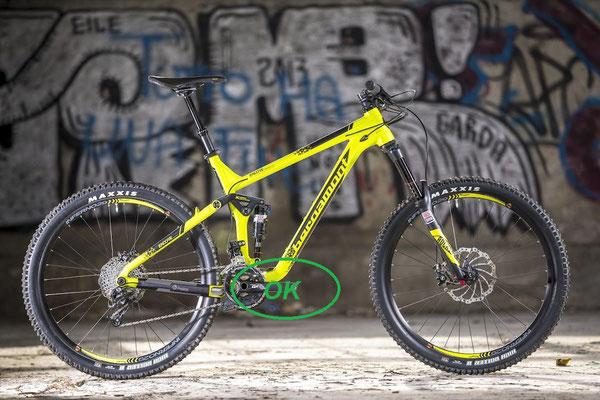 kit motore elettrico per mountain bike sotto il telaio.
