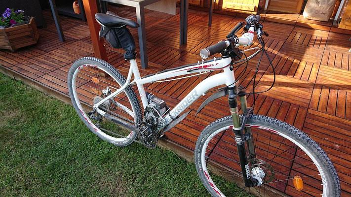 rock rider electric bike