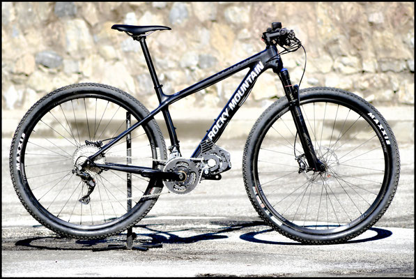 motore elettrico mtb sotto la bici.