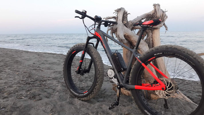 fat bike electric
