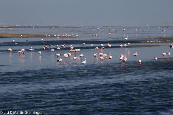 Walvis Bay Lagune