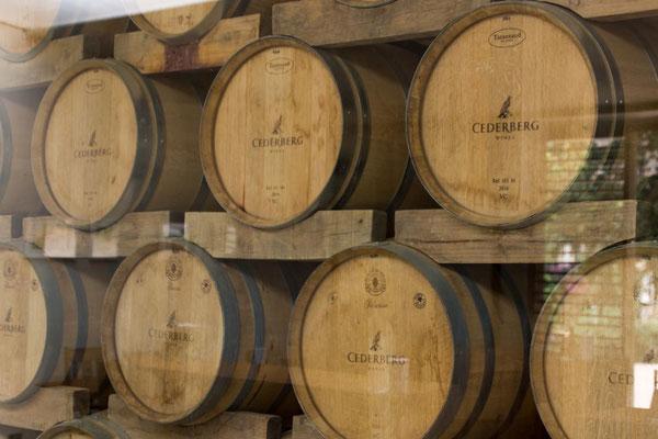 Weinverkostung Cederberg Cellar