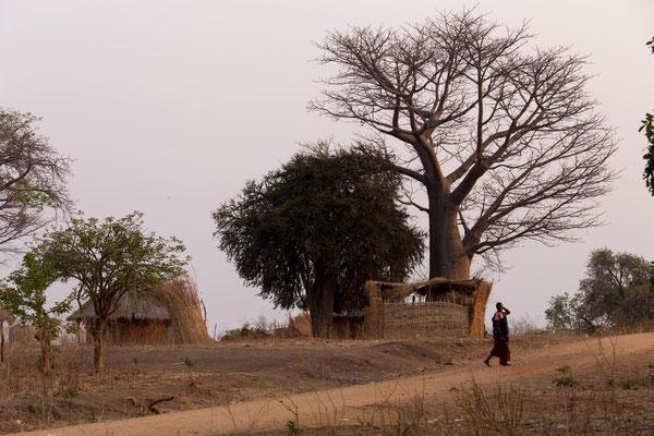 Morgenstimmung im Dorf