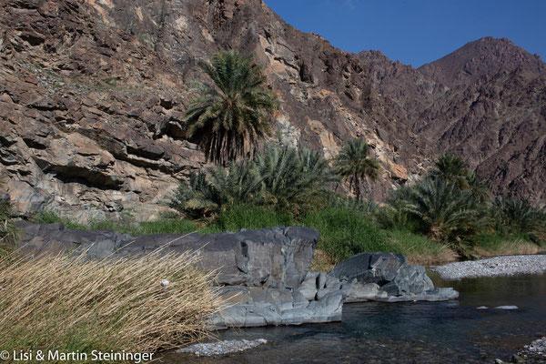 Wadi Abayad