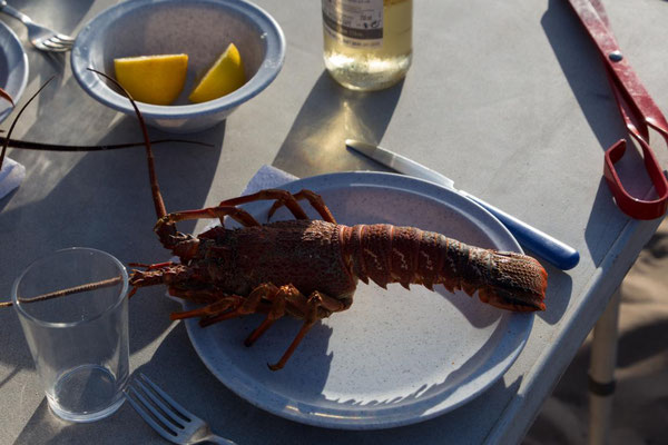 Lobster gegrillt - Mahlzeit