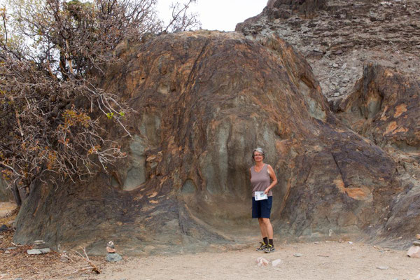 The Hand Of God im Richtersveld NP