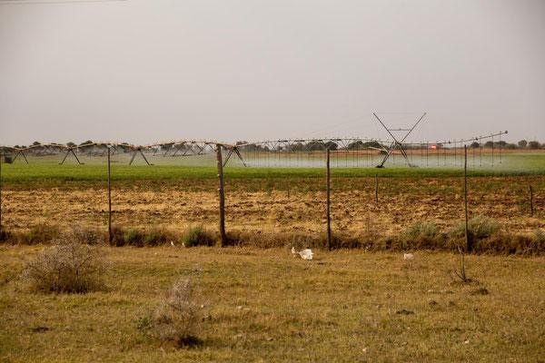 Bewässerung für die Felder