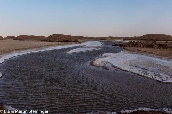 optisch wunderbare Reste der Überschwemmungen vom Frühjahr
