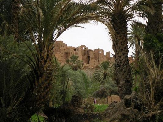 der Palmenhain von Tenerhir
