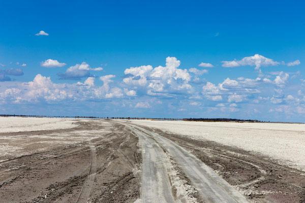 Salzpfanne am Weg zu Lekhubu Island
