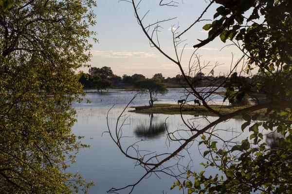 Boteti River