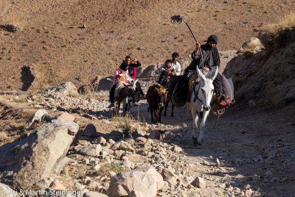unterwegs auf Eselspfaden
