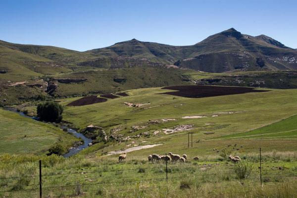 Drakensberge Eastern Cape
