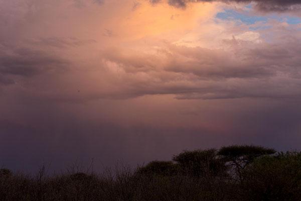 aufziehendes Gewitter in der Kalahari