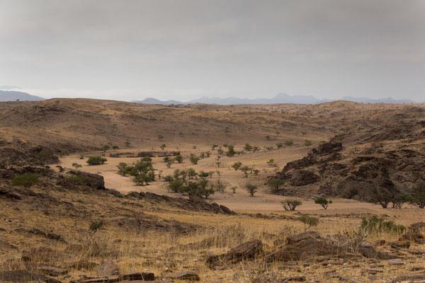 Himbakraal im Flussbett