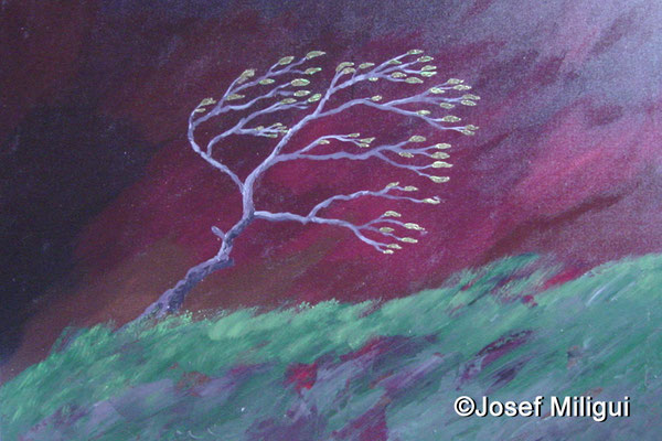 Mein Lebensbaum im Sturm