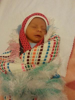 Talha , 2 Wochen alt
