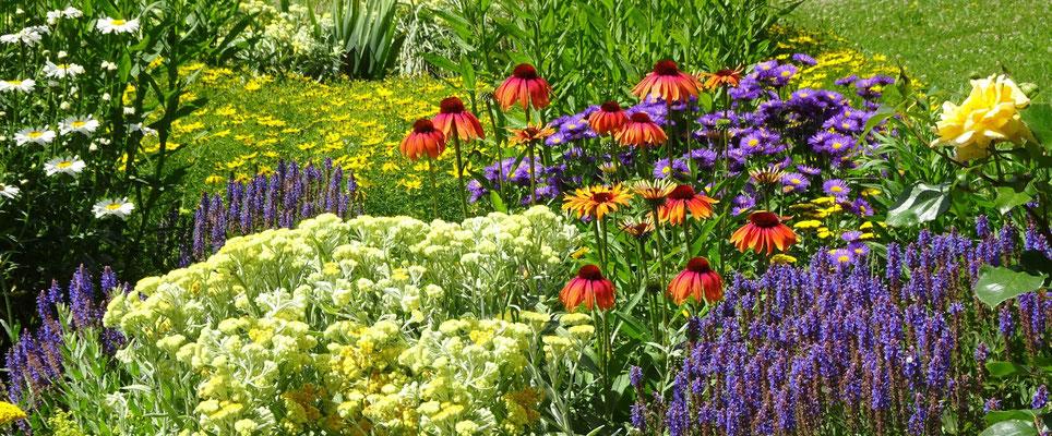 Immer Blühender Garten gartengestaltung und planung für ihre individuellen wünsche freuen