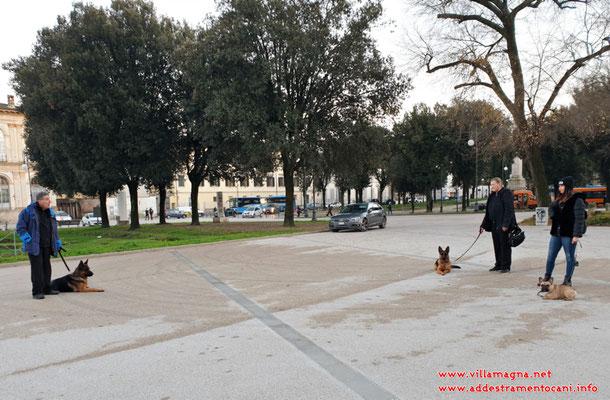 Addestramento di gruppo sulle mura a Lucca