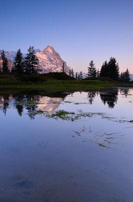 Eiger - Berner Oberland