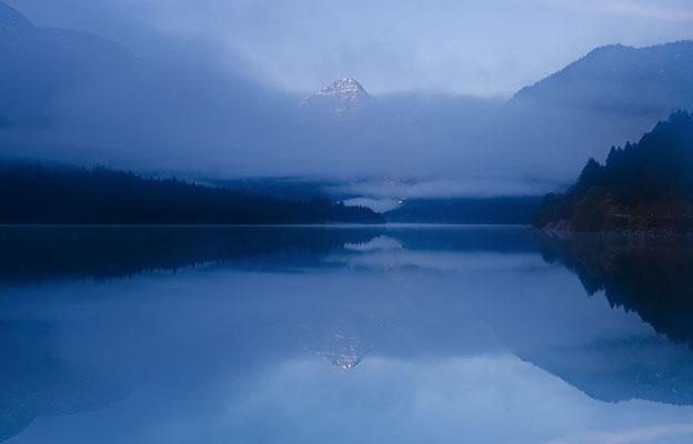 Thanneler im Nebel - Plansee