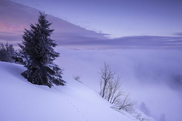 Selibühl - Berner Oberland