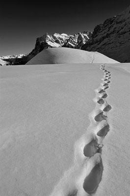Berner Oberland - Blick zum Wetterhorn