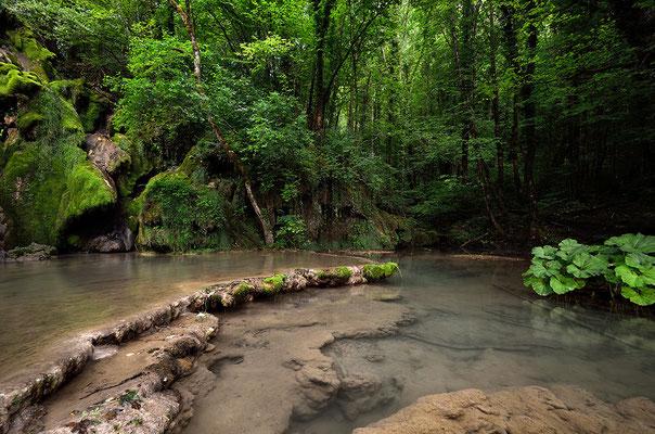 Tuffgestein im Flussbett - Franche Comté - Jura