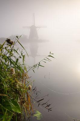 Windmühlen im Nebel