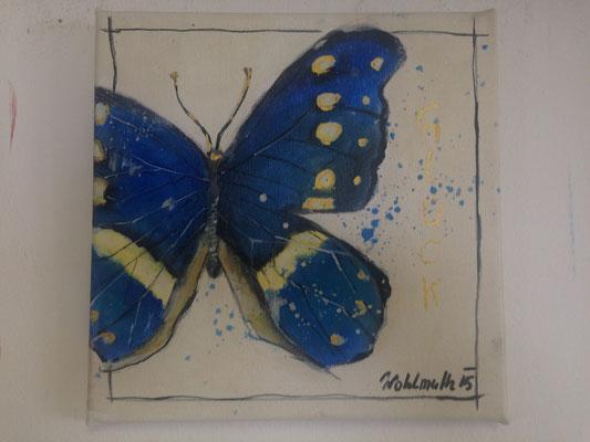Schmetterling, 25x25