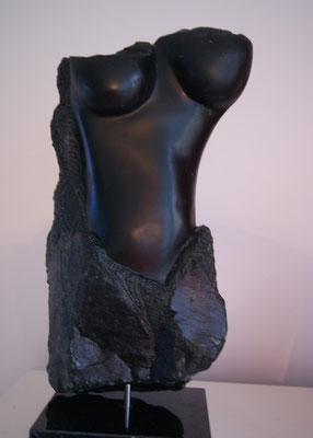 Torso, Serpentijn 2014*