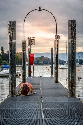 Steg am Bodensee